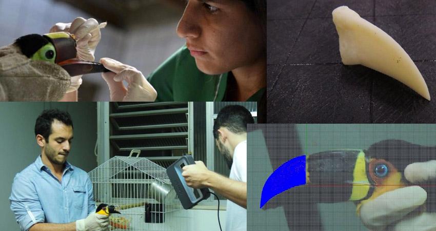 Becco stampato in 3D Tucano