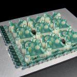 Guide chirurgiche realizzate con la Stampante 3D ProJet MJP 3600 Dental